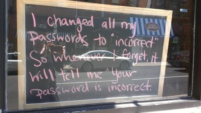 lost password